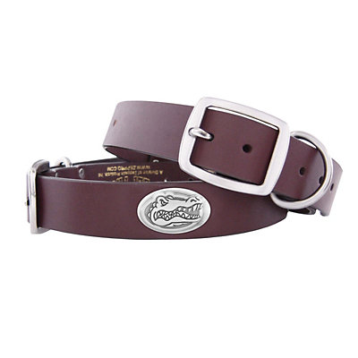 Zep-Pro Florida Gators Concho Leather Dog Collar - XL