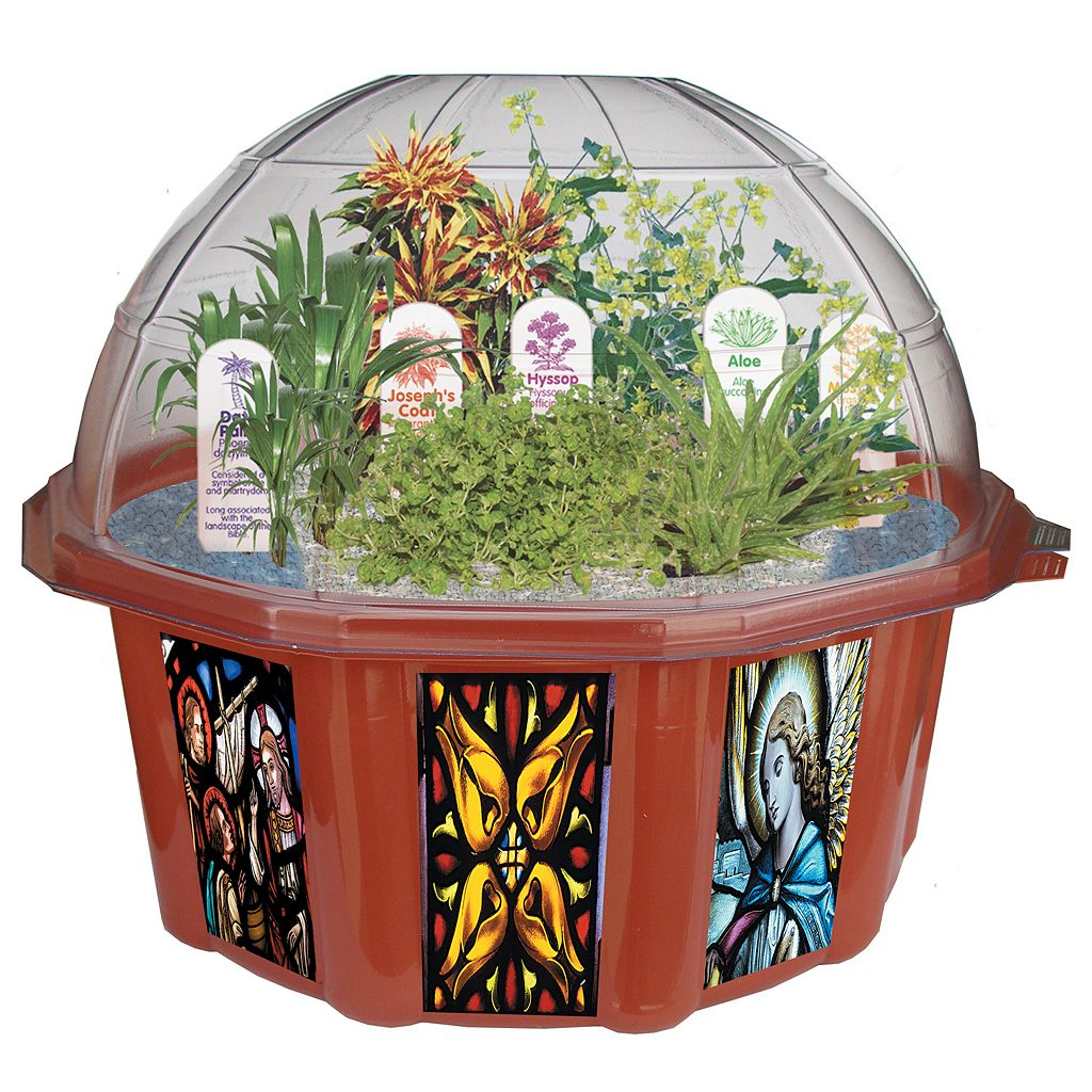 Biblical Garden Dome Terrarium by DuneCraft