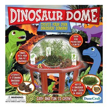Dinosaur Dome Terrarium by Dunecraft