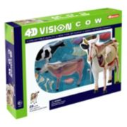 4D Vision Cow Anatomy Model by 4D Master