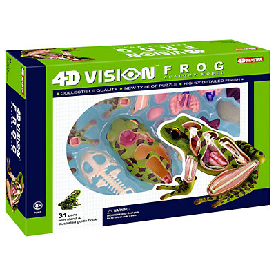 4D Vision Frog Anatomy Model by 4D Master