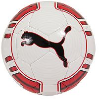 PUMA evoPOWER 5 Trainer Soccer Ball