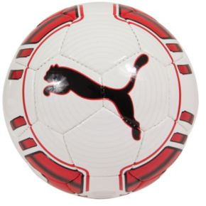 PUMA evoPOWER 5 Trainer Soccer Ball