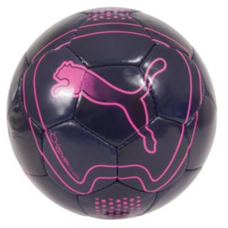 PUMA evoPOWER 6 Trainer Soccer Ball