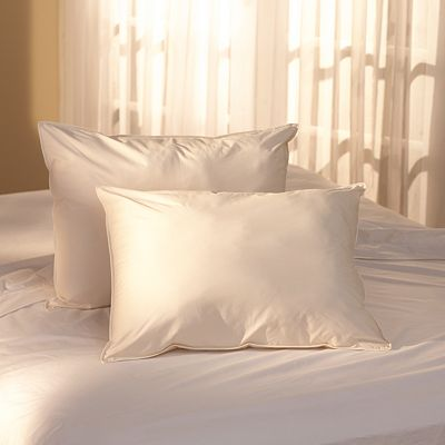 Natural Living 300-Thread Count Ingeo Pillow