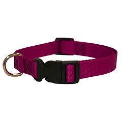 Majestic Pet 16-in. Collar