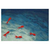 Liora Manne Visions III Goldfish Doormat - 20'' x 29 1/2''