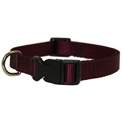 Majestic Pet 12-in. Collar