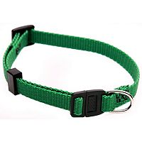 Majestic Pet 12-in. Safety Collar
