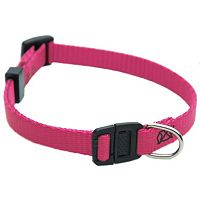 Majestic Pet 12 in Safety Collar