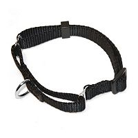 Majestic Pet Martingale 26 in Collar