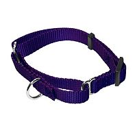 Majestic Pet Martingale 16-in. Collar