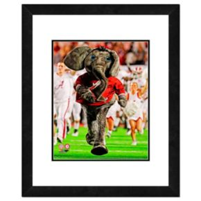"Alabama Crimson Tide Mascot Framed 11"" x 14"" Photo"