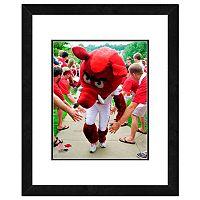 Arkansas Razorbacks Mascot Framed 11