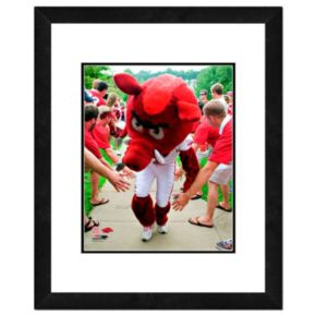"Arkansas Razorbacks Mascot Framed 11"" x 14"" Photo"