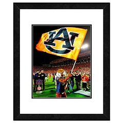 Auburn Tigers Mascot Framed 11' x 14' Photo