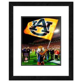 """Auburn Tigers Mascot Framed 11"""" x 14"""" Photo"""