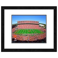 Clemson Tigers Stadium Framed 11