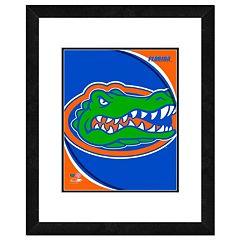Florida Gators Team Logo Framed 11' x 14' Photo