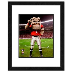 Georgia Bulldogs Mascot Framed 11' x 14' Photo