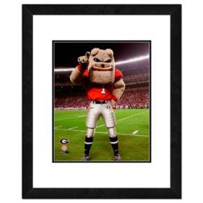 "Georgia Bulldogs Mascot Framed 11"" x 14"" Photo"