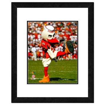 Miami Hurricanes Mascot Framed 11