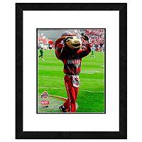 Ohio State Buckeyes Mascot Framed 11