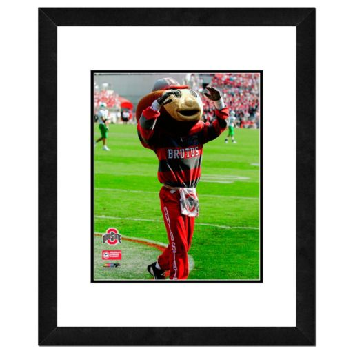"Ohio State Buckeyes Mascot Framed 11"" x 14"" Photo"