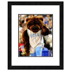 UCLA Bruins Mascot Framed 11' x 14' Photo