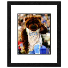 "UCLA Bruins Mascot Framed 11"" x 14"" Photo"