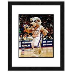 Washington Huskies Mascot Framed 11' x 14' Photo