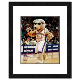 "Washington Huskies Mascot Framed 11"" x 14"" Photo"