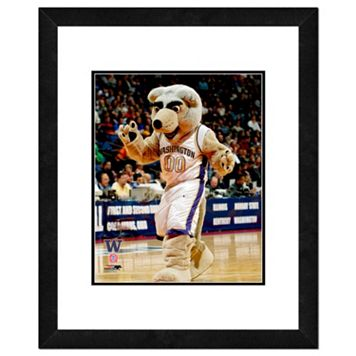 Washington Huskies Mascot Framed 11
