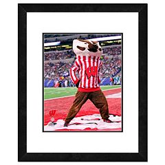Wisconsin Badgers Mascot Framed 11' x 14' Photo