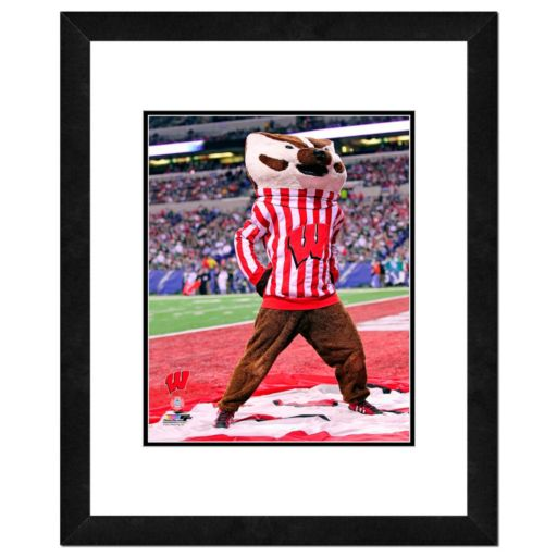"Wisconsin Badgers Mascot Framed 11"" x 14"" Photo"