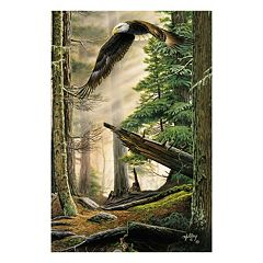Reflective Art ''American Heritage'' Canvas Wall Art