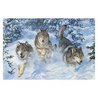Reflective Art ''Winter Realm'' Canvas Wall Art