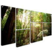 """""""Muir Woods"""" 6-piece Canvas Wall Art Set"""