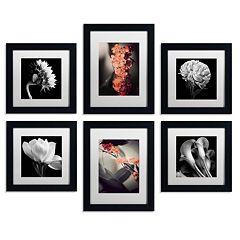 6-piece ''Floral Gallery'' Wall Art Set