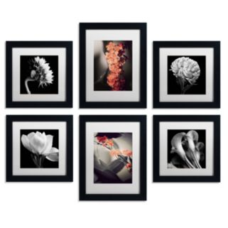 6-piece ''Floral Gallery'' Wall Art Set