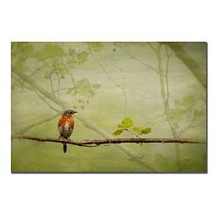 'Bluebird in Spring' Canvas Wall Art