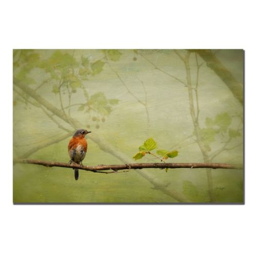 """Bluebird in Spring"" Canvas Wall Art"