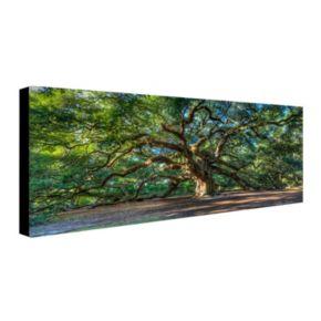 """Angel Oak Charleston"" Canvas Wall Art"