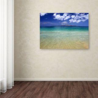 """Hawaii Blue Beach"" Canvas Wall Art"