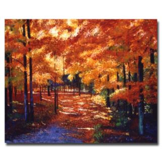 """""""Magical Forest"""" Canvas Wall Art"""