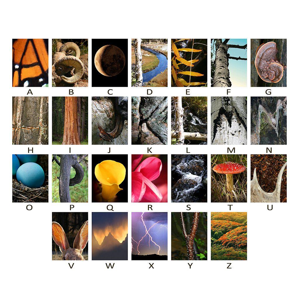 ''Nature'' Alphabet Wall Art