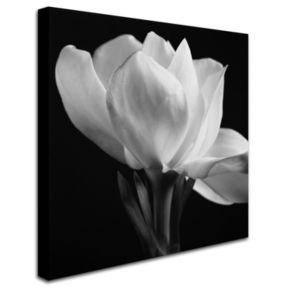 "Trademark Fine Art ""Gardenia"" Canvas Wall Art"