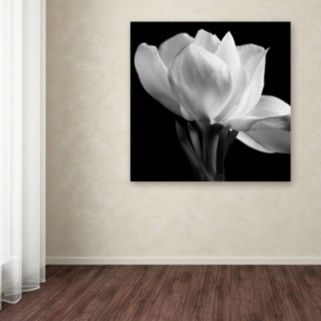 "Trademark Fine Art ""Gardenia"" Canvas Wall Art"