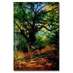 'Bodmer Oak, Fontainebleau Forest' Canvas Wall Art by Claude Monet