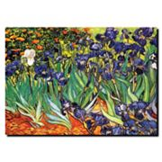 'Irises at Saint-Remy' Canvas Wall Art by Vincent van Gogh